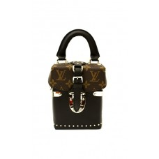 Сумка Louis Vuitton Monogram Camera Box 93900-1R